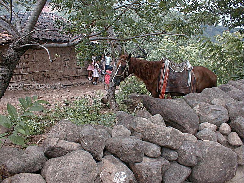 File:HN998sRamon Horse+Casa.jpg