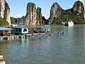 Ha Long Bay, Vietnam - panoramio (7).jpg