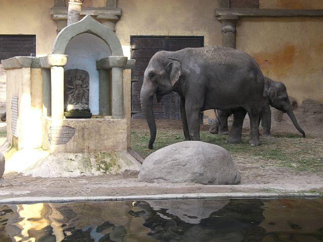 Tierpark Hagenbeck_6