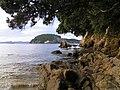 Hahei Beach - panoramio (1).jpg