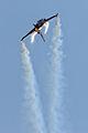 Hamilton airshow 2012 mcV 295.jpg