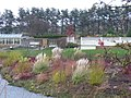Harlow Carr Gardens - geograph.org.uk - 738681.jpg