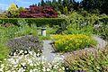 Harold and Frances Holt Physic Garden - UBC Botanical Garden - Vancouver, Canada - DSC08409.jpg