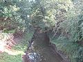 Heading For Scoulton Mere - geograph.org.uk - 293188.jpg