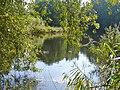 Heiligensee - Erlengrabenteich - geo.hlipp.de - 41540.jpg