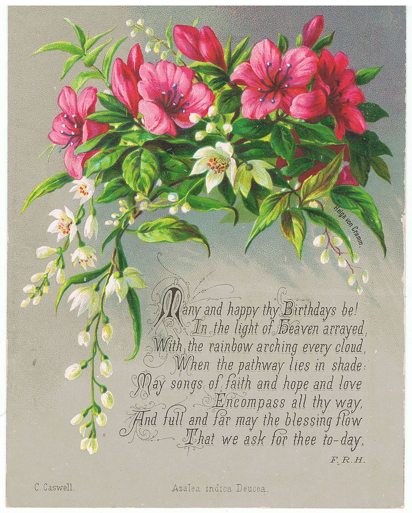 the 40 romantic birthday wishes wishesgreeting