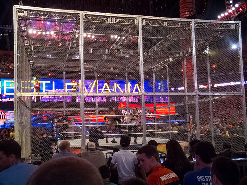 File:Hell in a Cell Used For The Undertaker vs Triple H at ...