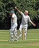 Hertfordshire County Cricket Club v Berkshire County Cricket Club at Radlett, Herts, England 005.jpg