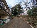 Higashiasakawamachi, Hachioji, Tokyo 193-0834, Japan - panoramio (111).jpg