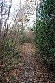 High Weald Way through High Wood - geograph.org.uk - 1056378.jpg