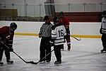 Hockey 20080824 (59) (2794752351).jpg
