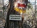 Hohe Wand-Strassenbahnerweg Abzweigung Krumme Ries.JPG
