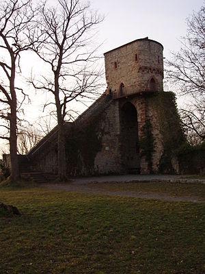 Hohennagold Castle - Hohennagold Castle