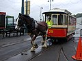 Horse tram arriving at Derby Castle station Douglas - geograph.org.uk - 473122.jpg