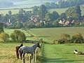 Horses on Turville Hill - geograph.org.uk - 995601.jpg