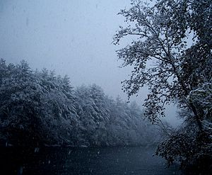 """Housatonic River - View of the """"fly fishing and paddling"""" section of the river during a snowstorm. Surrounding forests are still wild and support animal life despite the threat of suburban encroachment."""
