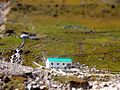 House in the Himalayas.jpg