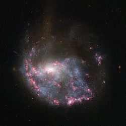 Hubble view of NGC 922.jpg