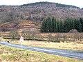 Huel Crag - geograph.org.uk - 657224.jpg
