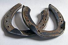 https://upload.wikimedia.org/wikipedia/commons/thumb/2/25/Hufeisen_mit_Aufzuegen_DSC_3900.jpg/220px-Hufeisen_mit_Aufzuegen_DSC_3900.jpg