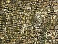 Hukvaldy, hrad, struktura 02.jpg