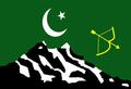 Hunza flag.png