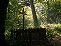 I WW Military cemetery 383 Wroblowice,Krakow,Poland.JPG