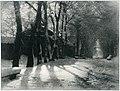 In the City Park (Andreyev).jpg