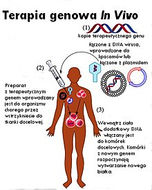 géntechnológiával módosított gyógyszerek ízületek kezelésére