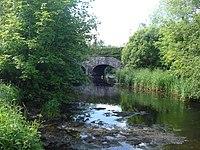 Inagh River downstream.jpg