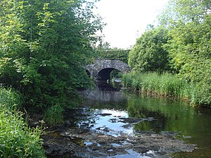 R460 road (Ireland) - Image: Inagh River downstream