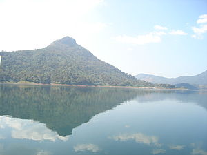 Idamalayar Dam - Reservoir area where birds are spotted