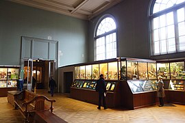 Interior view - Royal Museum for Central Africa - DSC06711.JPG