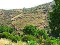 Ioulis 840 02, Greece - panoramio (9).jpg