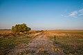 Irwin, Nebraska (9097202206).jpg