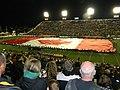 Ivor Wynne Stadium3.jpg
