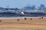 J-Air, ERJ-170, JA216J (25746055146).jpg