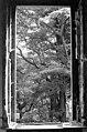 JACQUES VILET - 1980 Fenêtres Luxuriantes.jpg