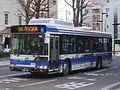 JR Hokkaidō bus S200F 2419.JPG