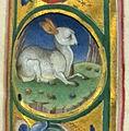 Jacopo filippo argenta e fra evangelista da reggio, antifonario IV, post 1485, 10,3.jpg