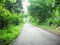 Jalan di Desa Buniasih, Maleber, Kuningan - panoramio.jpg
