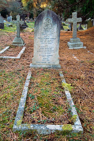 James T. Tanner - Tanner's grave in Brookwood Cemetery