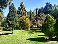 Jardín botánico de Tizatlán en Tlaxcala 02.jpg