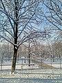 Jardin des Tuileries sous la neige 7.jpg