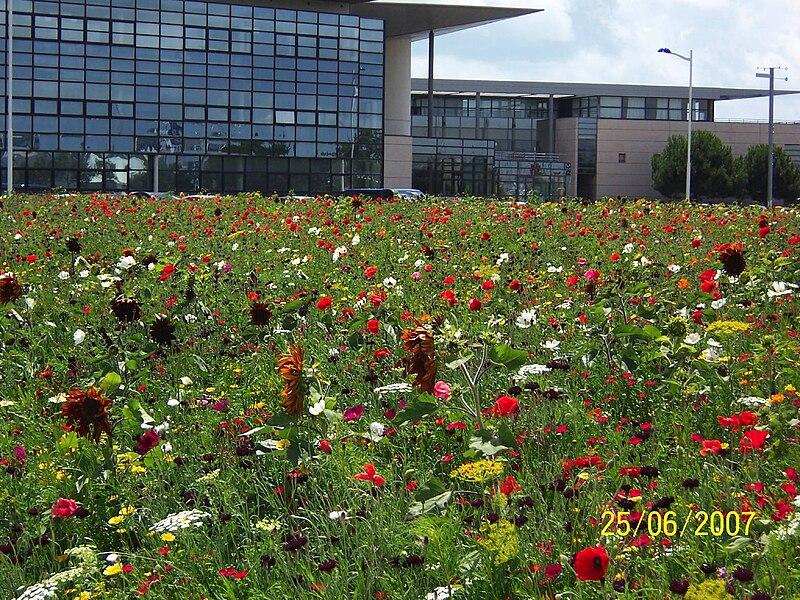 Fichier jardin universite la wikip dia for Entretien jardin la rochelle