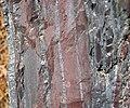 Jaspilite banded iron formation (Soudan Iron-Formation, Neoarchean, ~2.69 Ga; Rt. 169 roadcut between Soudan & Robinson, Minnesota, USA) 12 (18417446714).jpg