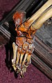 John Horwood's skeleton - detail (foot).jpg