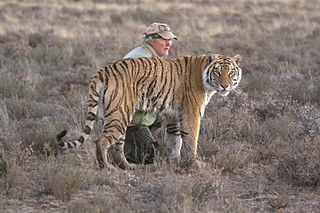 John Varty South African film maker and Big Cat Specialist
