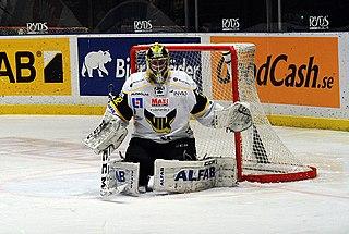 Jonas Fransson Swedish ice hockey player