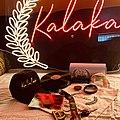 Kalakari film festival merchandise.jpg